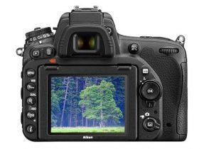 Nikon D750 + AF-S 24-120mm F/4.0G ED VR-3491
