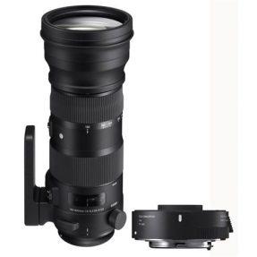 Sigma 150-600mm F/5-6.3 DG OS HSM Sports Canon + TC-1401 (1.4X) teleconvertor